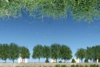 2-Reflexion-PB-W