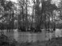 Loire Inondations 2008